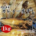 鰈魚 - 訳あり日本海産カレイ一夜干し1kgセット!送料無料(1配送先で2セット以上お買い上げで1セット増量)*冷凍