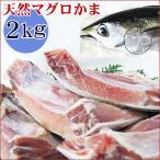 鲔鱼 - 送料無料[マグロかま]どっさり1.5kg(1〜3個)詰め込み[冷凍][1配送先で2セット購入で1セットおまけ]*バーベキュー