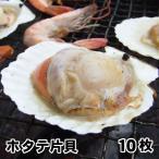 [片貝ホタテ10枚セット](約500g入り)[冷凍] バーベキュー BBQ