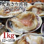 (BBQ バーベキュー アサリ)大あさり片貝(ウチムラサキ貝)(1kg(12-15個)入り)[冷凍]海鮮バーベキュー