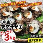 送料無料 天然サザエ鳥取県産[冷凍] 3kg(中小サイズ)