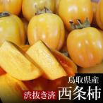 (柿 かき)[鳥取県産]西条柿(さいじょうかき)[渋抜き済み] 10kg〔送料無料〕[(M)82玉-(2L)56玉][常温]
