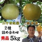 新甘泉と二十世紀梨の詰め合わせ 5kgセット 秀品進物用:12-18玉入り 送料無料 常温 鳥取県産 中野農園
