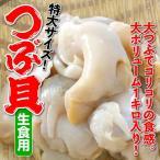 大ボリューム1キロ入り!生食用「つぶ貝」(バイ貝)特大サイズ・1キロ・冷凍