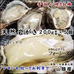 (カキ イワガキ 岩ガキ)送料無料(山陰産)天然岩牡蠣(カキ)[生]5個セット約1kg(200g前後が5個入)(1配送先で2セット以上お買い上げで1セット増量)*