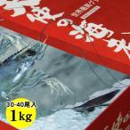 送料無料 特大サイズ お刺身用 天使の海老1kgセット(30-40尾程度入)業務・パーティー・まとめ買い用[冷凍]エビ