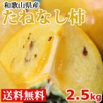 柿 たねなし柿 送料無料 2.5kg 和歌山県産