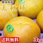 柿 太秋柿 送料無料 3kg 熊本県産