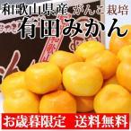 お歳暮 御歳暮 みかん 有田みかん 5kg Mサイズ 和歌山県産 送料無料 いなかもん倶楽部 果物 フルーツ ギフト