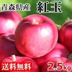 りんご 紅玉 2.5kg 12〜15玉 送料無料 長野県産 青森県産