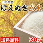 はえぬき 玄米 送料無料 28年度産 30kg 山形県産 米 産地直送