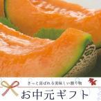 とままえ メロン 赤肉 1.3kg 北海道産 お中元 送料無料