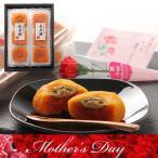 母の日 長寿柿 3個×2袋 送料無料 あんぽ柿 和歌山県産