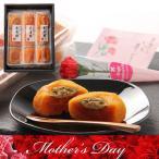 母の日 長寿柿 3個×3袋 送料無料 あんぽ柿 和歌山県産