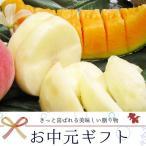 北海道産 赤肉 メロン & 山梨県産 桃6玉 お中元 送料無料