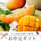 北海道産 赤肉 メロン & 沖縄県産 マンゴー お中元 送料無料