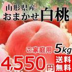 桃 おまかせ 白桃 5kg 山形県産 送料無料 訳あり ご家庭用 もも 産地直送の画像