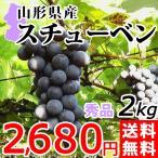 樹上完熟 スチューベン 2kg 送料無料 秀品  山形県産 ぶどう 葡萄 産地直送