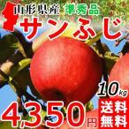 サンふじ りんご 10kg 準秀品 送料無料 山形産 ご家庭用 産地直送