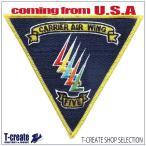アメリカ海軍ミリタリーワッペン トップガン CVW-5 CARRIER AIRWING FIVE, TOPGUN [並行輸入品]