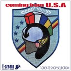 アメリカ海軍ミリタリーワッペン トップガン CVW-19 CARRIER AIR WING 19, TOPGUN [並行輸入品]