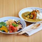 丸皿 パスタ皿 カレー皿 蒼 sou プレート 23.5cm アウトレット込み 大皿 和食器 お皿 盛り皿 おしゃれ 染付 和風 かわいい おしゃれ