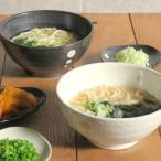 和食器 水玉 さぬきどんぶり (大)(ドットモノトーンシリーズ)丼 どんぶり ラーメンどんぶり 丼ぶり めん鉢 ラーメン鉢 美濃焼 鉢 食器 おしゃれ