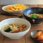 丼ぶり 水玉 麺鉢 大 (ドットモノトーンシリーズ) 和食器 丼 どんぶり さぬき丼ぶり 大きなどんぶり めん鉢 大鉢 麺鉢 食器 おしゃれ