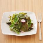洋食器 リストランテ おしゃれデザイン Line スクエアプレート 19cm アウトレット ケーキ皿 白い食器 お皿 サラダ皿 デザート皿 日本製 美濃焼