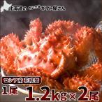 花蟹 - かに カニ 花咲蟹 1.2kg×2尾 (ボイル冷凍) ロシア産 グルメ ギフト 贈り物 北海道 お取り寄せ