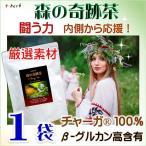 【送料無料】森の奇跡茶  美味しいチャーガ茶/カバノアナタケ茶/シベリア霊芝茶  最高品質ロシア産チャーガ100%