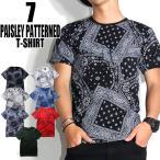 Tシャツ メンズ  半袖 ペイズリー柄  夏 カジュアル 大きいサイズ ストリート系 3カラー SからXL