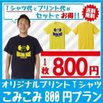 オリジナルTシャツ 丈夫な生地のこみこみ1着800円プラン(30枚〜) 5001-01