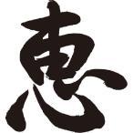 ショッピングtシャツ 恵書道家が書くかっこいい漢字Tシャツ
