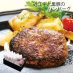 (産地直送/送料無料)近江牛と黒豚のハンバーグ (-V5932-507A-) | 内祝い 御祝