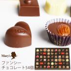 メリーチョコレート ファンシーチョコレートギフト 54個 FC-N (t0) | 内祝い プレゼント お祝い