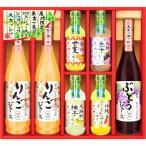美食ファクトリー 産地限定100%ジュース&果汁入りスカッシュ NJS-50 (-C9247-...