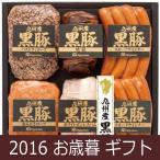 お歳暮 ギフト (産地直送)九州産黒豚肉使用 バラエティセット NO-50 (7856-071)(送料無料)