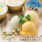 (産地直送・送料無料) いつもありがとう 北海道アイスセット (-S9007-203A-) | 内祝い ギフト 出産内祝い 引き出物 結婚内祝い 快気祝い お返し 志