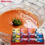 スープギフト 丸大食品 スープセット ( WSB-30 ) メーカー直送・送料無料 | わけあり 売り尽くし 在庫処分 半額 賞味期限:2019.5.31