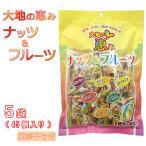 大地の恵みナッツ&フルーツ 5袋(50個入り) (豆菓子付き)