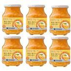 信州須藤農園 砂糖不使用 100%フルーツ マーマレード 185g×6個   【スドージャム 製菓材料 オレンジジャム 柑橘 低糖度】