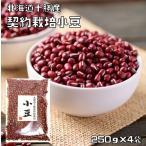 【宅配便送料無料】  豆力 契約栽培十勝産 小豆 (あずき) 1kg     【北海道産 豆類】