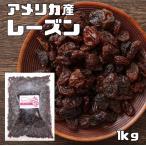 【宅配便送料無料】世界美食探究 アメリカ産 レーズン 1kg  【ドライフルーツ】