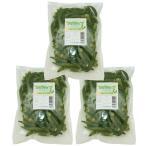 世界の乾燥野菜 ベトナム産 ゴーヤチップ 200g×3袋     【ドライ 干し 乾燥ゴーヤ】