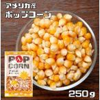 食べもんぢから.Yahoo!店で買える「豆力 豆専門店のポップコーン 250g」の画像です。価格は99円になります。