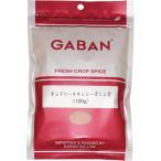 【メール便送料無料】 GABAN タンドリーチキンシーズニング(袋) 100g   【ミックススパイス ハウス食品 香辛料 パウダー 業務用】