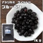 世界美食探究 アメリカ産 ブルーベリー(ワイルド種) 1kg