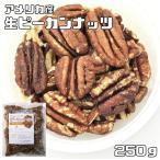 世界美食探究 アメリカ産 ピーカンナッツ 250g 【生】【無塩、無油、ペカンナッツ】