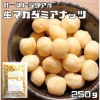 世界美食探究 オーストラリア産 マカダミアナッツ 250g 【生】【無塩、無油】【マカデミア】